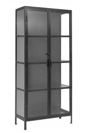 Black cabinet, 2 doors, iron/glass